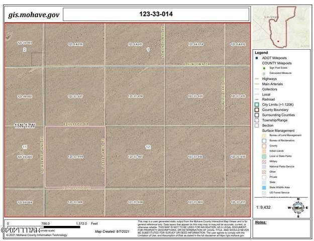 Par 2565 Jesse James, Yucca, AZ 86438 (MLS #1017593) :: Local Realty Experts