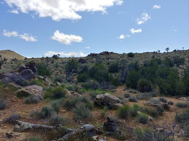 Lot 2391 Yucca Dr, Yucca, AZ 86438 (MLS #1018100) :: Local Realty Experts
