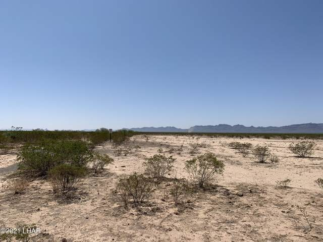 45100 Stutz Well Rd, Salome, AZ 85348 (MLS #1018115) :: The Lander Team