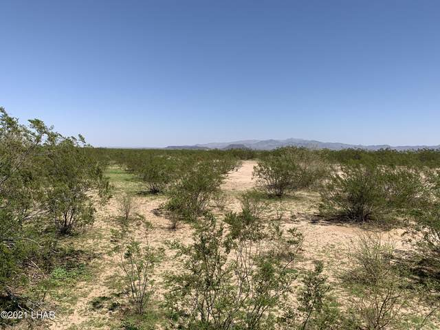 53254 61st St, Salome, AZ 85348 (MLS #1018117) :: Realty One Group, Mountain Desert