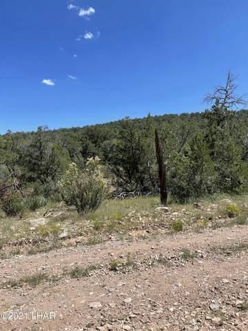 45701 N Los Vientos, Seligman, AZ 86337 (MLS #1018299) :: Local Realty Experts