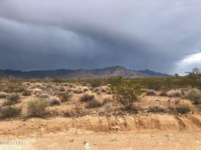 000 S Wyatt Earp Rd Rd, Yucca, AZ 86438 (MLS #1018318) :: Local Realty Experts