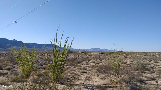 Lot 52 W Roosevelt Rd, Yucca, AZ 86438 (MLS #1018378) :: Local Realty Experts