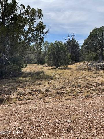 34587 W Avenida Risco, Seligman, AZ 86337 (MLS #1018674) :: Local Realty Experts