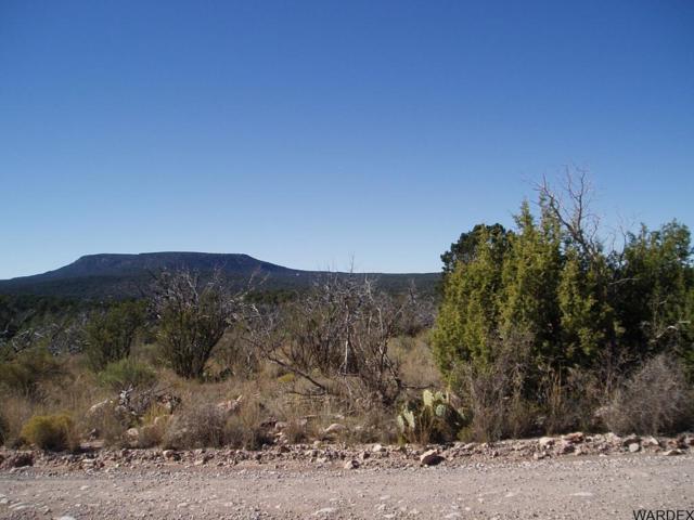52550 Via De Oro Pwky, Seligman, AZ 86337 (MLS #908572) :: Coldwell Banker