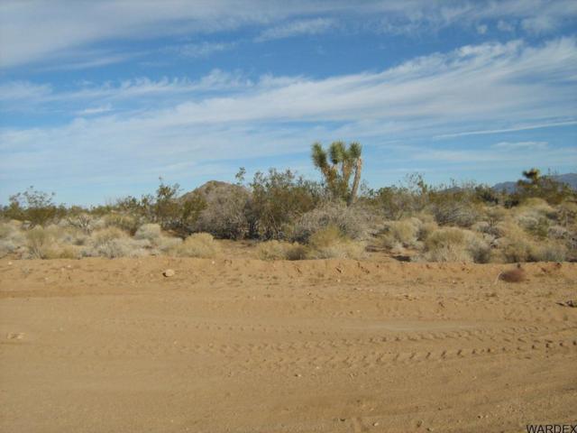 811 Kit Carson, Yucca, AZ 86438 (MLS #909110) :: The Lander Team
