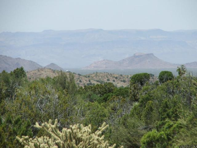 Lot 3279 Cattle Crossing Rd, Yucca, AZ 86438 (MLS #929281) :: The Lander Team