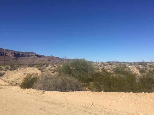 4070 Tierra Vista Dr, Yucca, AZ 86438 (MLS #1003623) :: The Lander Team