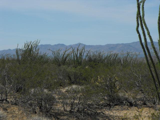 51 W Desierto Rd, Yucca, AZ 86438 (MLS #1005717) :: Coldwell Banker