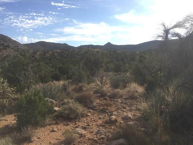 0 Unknown Doyle Rd, Kingman, AZ 86409 (MLS #1007825) :: The Lander Team