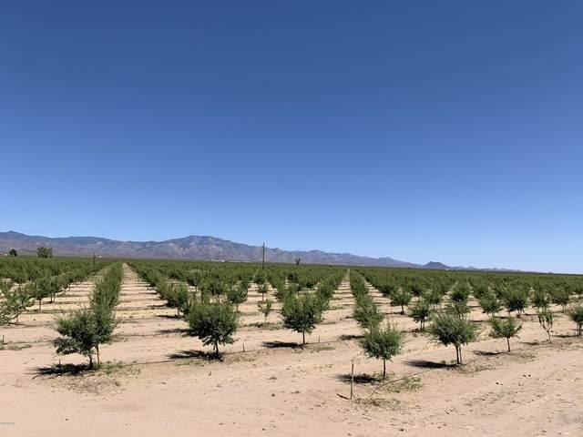 4740 W Quartzite Dr, Golden Valley, AZ 86413 (MLS #1013013) :: Realty One Group, Mountain Desert