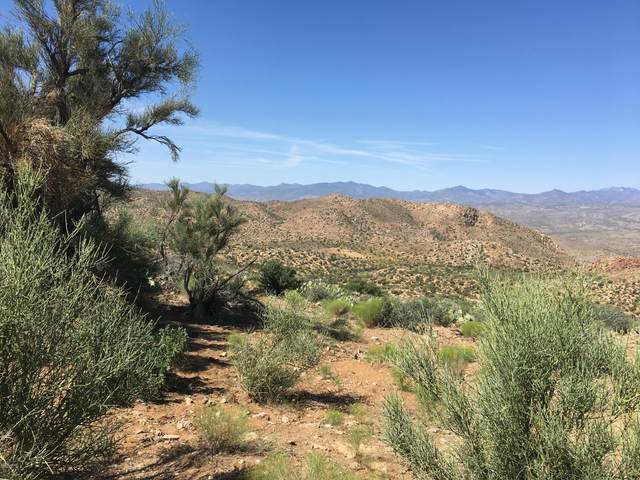 Lot 96 New Water Well, Kingman, AZ 86401 (MLS #1013216) :: The Lander Team