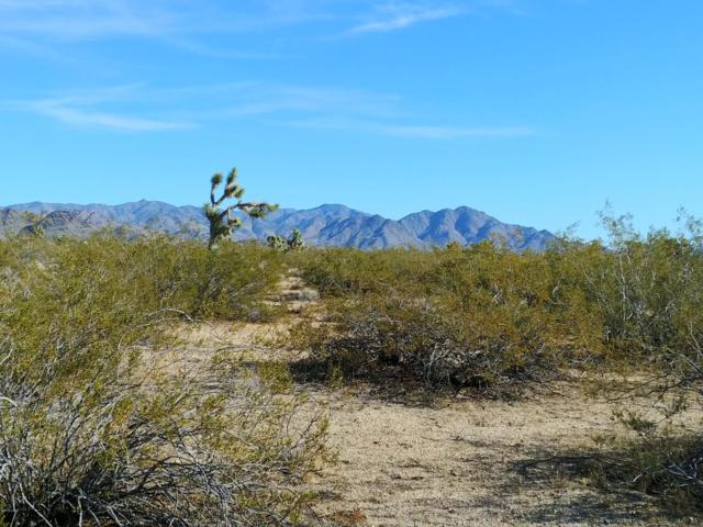 12 Rutz Rd, Yucca, AZ 86438 (MLS #818756) :: Realty One Group, Mountain Desert