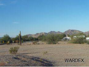 1080 N Central Blvd, Quartzsite, AZ 85346 (MLS #1009089) :: Realty One Group, Mountain Desert