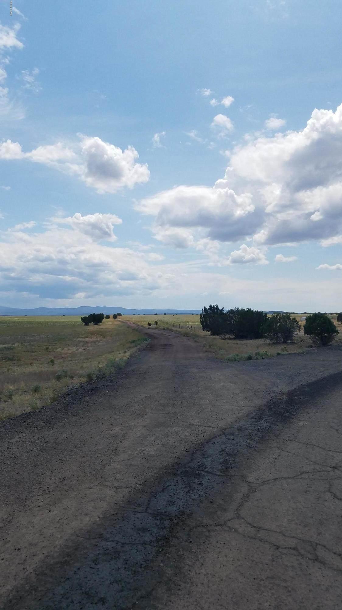 79 Acres High Mountain Rd - Photo 1