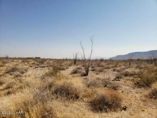 Lot 41 W Wilshire Rd Rd, Yucca, AZ 86438 (MLS #1012888) :: Coldwell Banker
