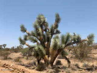 60 E Ocotillo, Yucca, AZ 86438 (MLS #1017437) :: The Lander Team