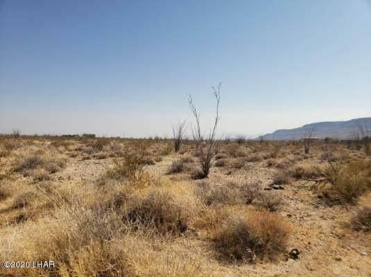 Lot 24 W Wilshire Rd Rd, Yucca, AZ 86438 (MLS #1017464) :: Coldwell Banker