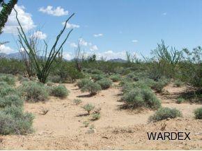 3181 Butch Cassidy Rd, Yucca, AZ 86438 (MLS #904191) :: The Lander Team