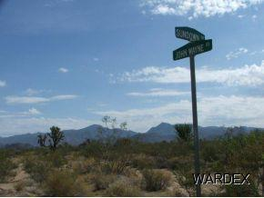 Par 2578 Sundown Dr, Yucca, AZ 86438 (MLS #906393) :: The Lander Team