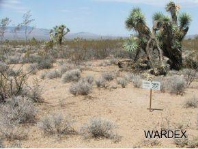 Par 2571 Wyatt Earp Rd, Yucca, AZ 86438 (MLS #906402) :: The Lander Team