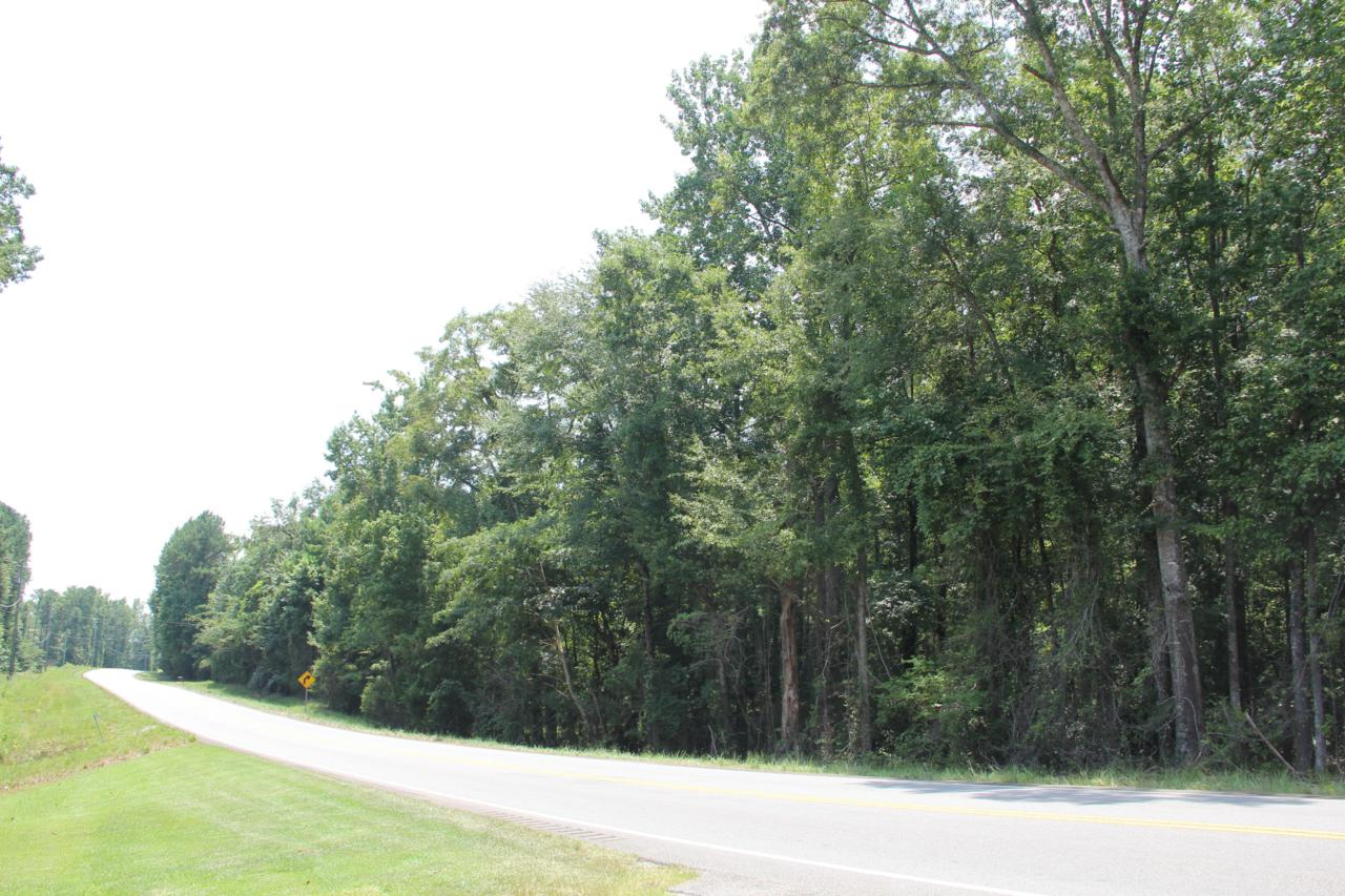13+/- Acres Hwy 49 South - Photo 1
