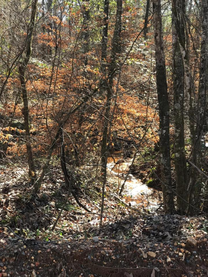 108 Acres Off Chisolm Rd - Photo 1