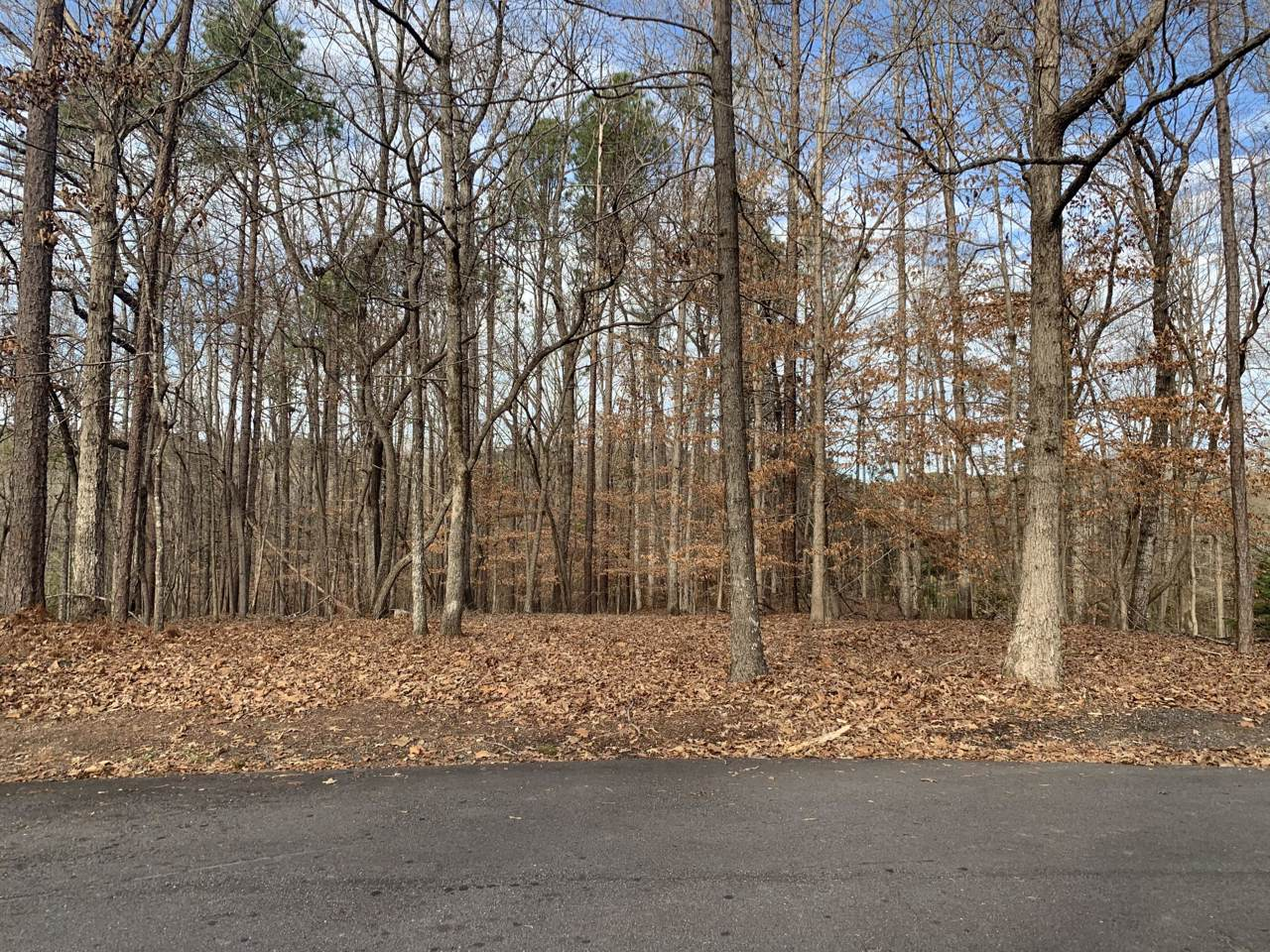 Lot 15 Greenview Terr - Photo 1