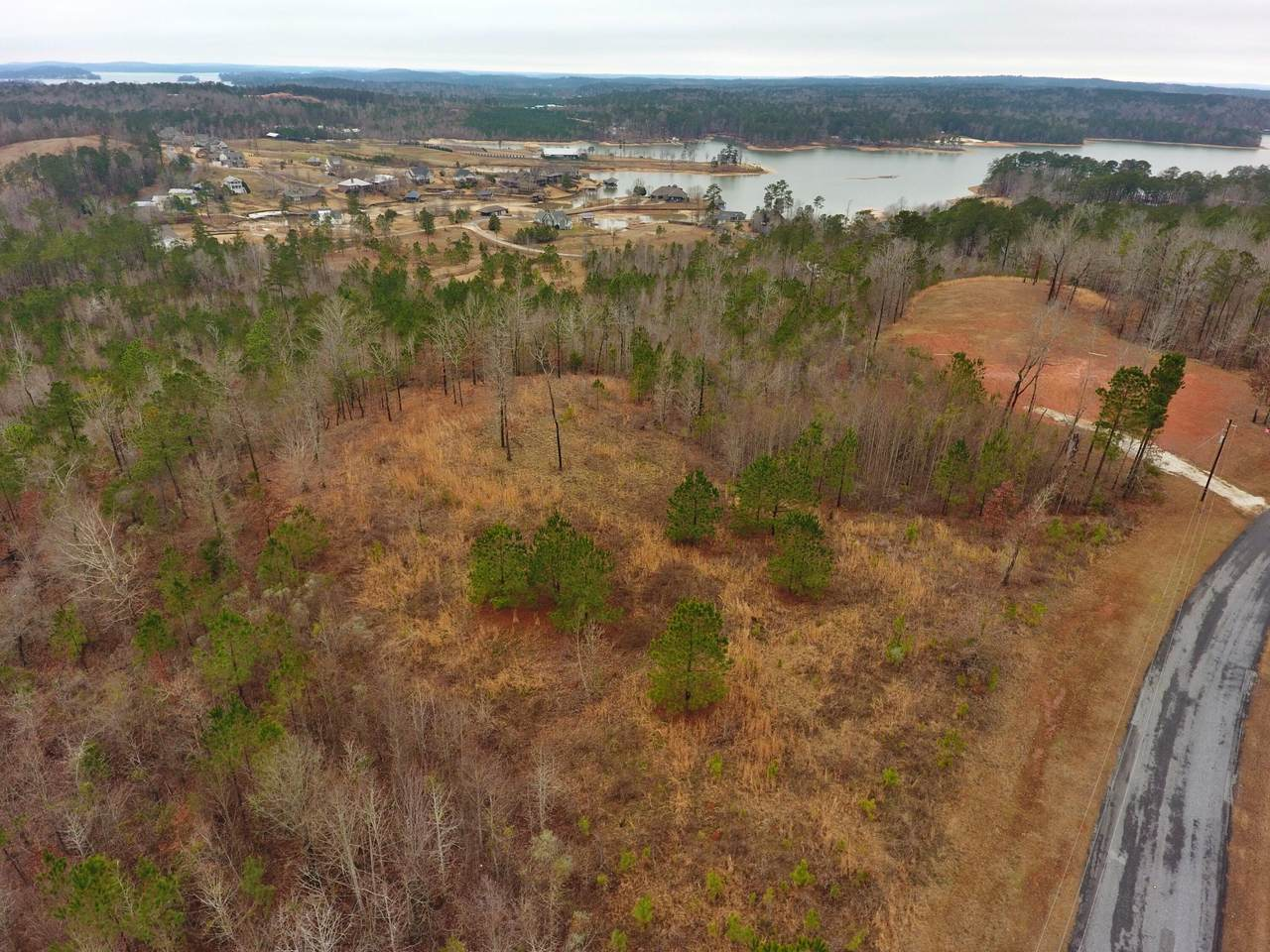 Lot 15Ac Beri Barfield Dr - Photo 1