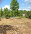 Lot 6 Lakewinds - Photo 2
