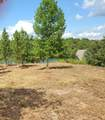 Lot 6 Lakewinds - Photo 4
