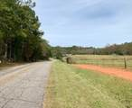 3+/- Acres Old Millers Ferry Road - Photo 2