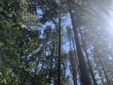 Partridge Creek - Photo 12