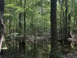 Partridge Creek - Photo 33