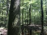 Partridge Creek - Photo 34