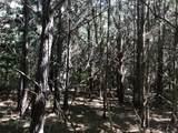 Partridge Creek - Photo 43