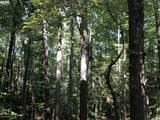 Partridge Creek - Photo 45