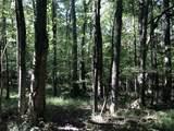 Partridge Creek - Photo 56