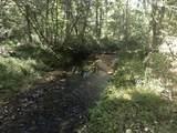 Partridge Creek - Photo 60