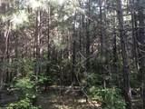 Partridge Creek - Photo 65