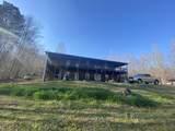945 Hatchet Creek Ln - Photo 11