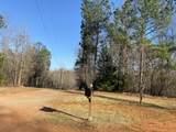 945 Hatchet Creek Ln - Photo 14