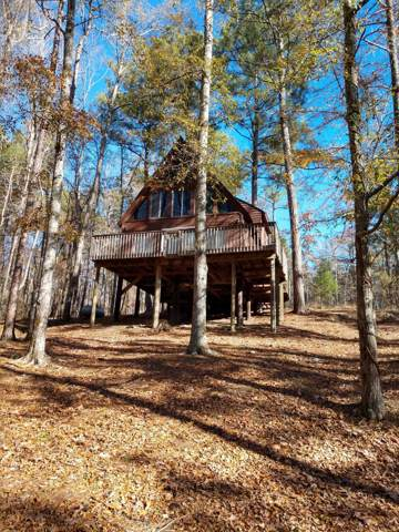 165 Buffords Bluff, Eclectic, AL 36024 (MLS #19-1592) :: The Mitchell Team