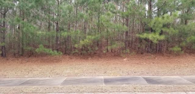 Lot 35 Water Oak Run, Jacksons Gap, AL 36861 (MLS #19-184) :: Ludlum Real Estate