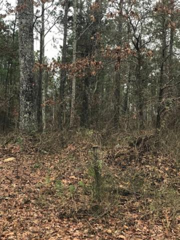 80 Acres North Of Daviston, Daviston, AL 36256 (MLS #19-324) :: Ludlum Real Estate