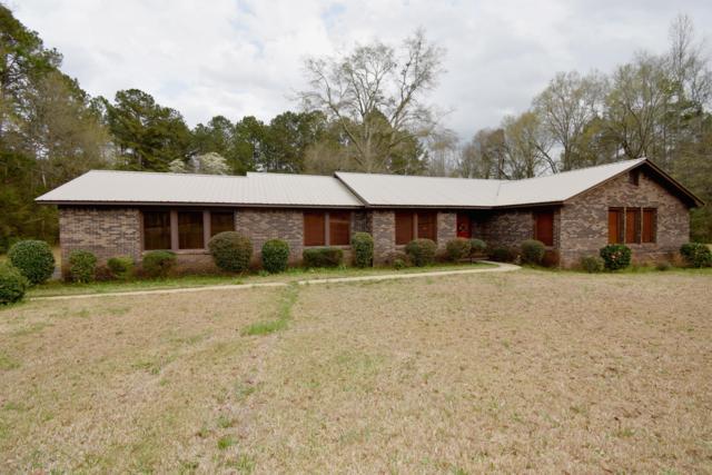 173 Eastview Dr, Dadeville, AL 36853 (MLS #19-415) :: Ludlum Real Estate