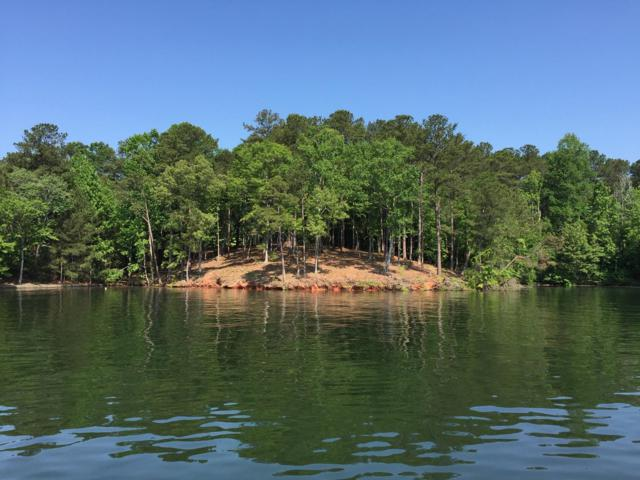 Oaks Pt, Jacksons Gap, AL 36861 (MLS #19-642) :: Ludlum Real Estate