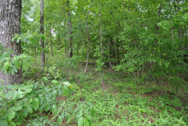103 Hickory Way, Dadeville, AL 36853 (MLS #19-721) :: Ludlum Real Estate