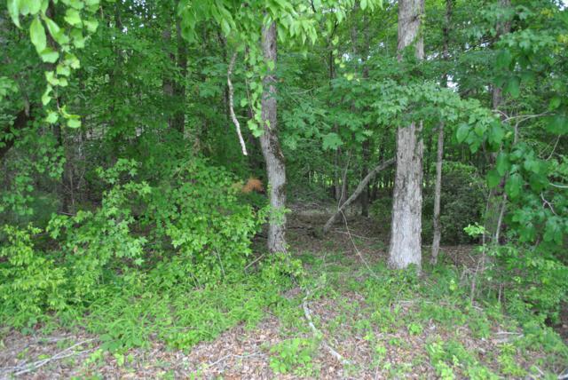 Lot 11 Greens View, Dadeville, AL 36853 (MLS #19-723) :: Ludlum Real Estate