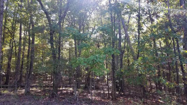 Lot 36 Deer Run Road, Dadeville, AL 36853 (MLS #19-746) :: Ludlum Real Estate